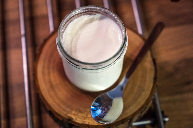 Domácí jogurt očkovaný jogurtem